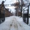 I disegni degli internati raccontano l'orrore dei campi di concentramento