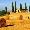 Accatastamento degli ex fabbricati rurali: nota del Consiglio nazionale Geometri