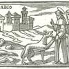 La Chiesa Cattolica e l'ecologia nella prossima Enciclica di Papa Francesco