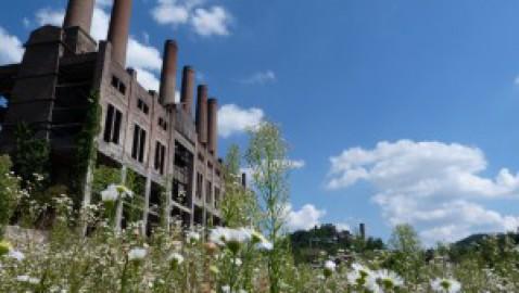 Reportage dalla Bielorussia: l'eredità radioattiva di Chernobyl