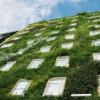 Le quindici linee linee guida per le green city in Italia.