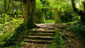 foreste ita
